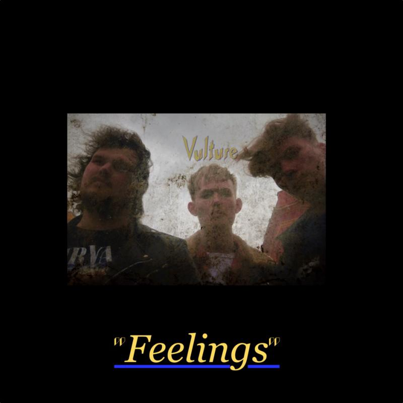 Vulture-Feelings